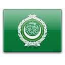 Перевод паспорта с арабского языка
